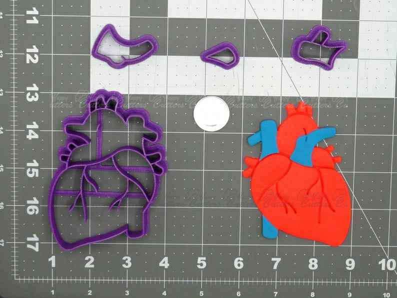 Heart Anatomical Structure  Cookie Cutter Set,                       heart cookie cutter, heart shaped cookie cutter, heart cutter, heart shape cutter, mini heart cookie cutter, love heart cookie cutter, rabbit biscuit cutter, tupac cookie cutter, mario brothers cookie cutters, sweet sugarbelle halloween cutters, large gingerbread man cutter, dog cookie cutters australia, karate cookie cutters, jhcookieco etsy,