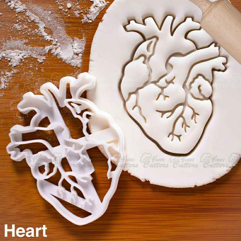 Anatomical Heart cookie cutter | Brain cookies cutters | biscuit cutter, Gifts for medical student science students | one of a kind | ooak, anatomy cookie cutters, anatomical heart cookie cutter, anatomical cookie cutter, skull cookie cutter, skeleton cookie cutter, brain cookie cutters, descendants cookie cutter, cruise ship cookie cutter, cookie cutters asda, diy cookie cutter aluminum foil, small heart cutter, peppa pig cookie cutter and stamp set, round pastry cutter set, paw print cookie cutter, happy cutters, best cookie cutters